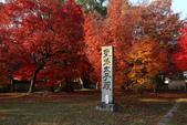 秋之戀(十) 愛.戀.嵐山:1024.jpg 京都嵐山