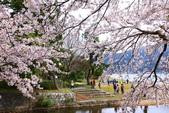 春(6) 春的禮讚:0670.JPG マキノ駅