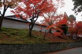 2010日本關西(3)京都東郊楓葉盟:0302.jpg  京都 曼殊院