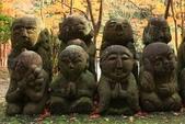 2010日本關西(4)可愛的愛宕念佛寺:0427.jpg 京都 愛宕念佛寺