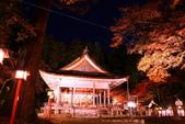 秋之戀(14) 京都秋夜:0852.jpg 坂本地区日吉大社