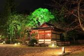 秋之戀(14) 京都秋夜:1159.jpg 京都大覚寺