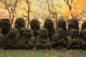 2010日本關西(4)可愛的愛宕念佛寺:0428.jpg 京都 愛宕念佛寺