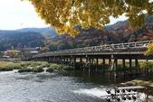 2010日本關西(5)嵐山與桃山:0480.jpg 京都 嵐山 渡月橋