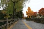 2010日本關西(1)兵庫三城:姬路、明石、神戶:0111.jpg