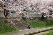 春(2) 藝界人生:0165.JPG 江川せせらぎ緑道
