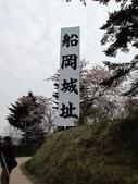 春(7) 美麗的零落:0960.JPG 船岡城址公園