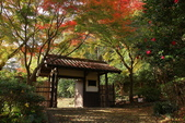 秋之旅(六) 東海秋豔:0530.jpg 浜松城公園
