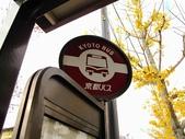 2010日本關西(3)京都東郊楓葉盟:0284.jpg