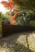 秋之旅(六) 東海秋豔:0531.jpg 浜松城公園