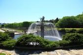 北國之春(8) 春日花海:0654.jpg 昭和記念公園
