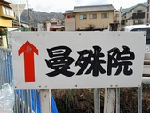 2010日本關西(3)京都東郊楓葉盟:0285.jpg