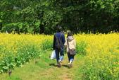北國之春(1) 戀人協奏曲:0692.jpg 昭和記念公園