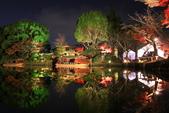 秋之戀(14) 京都秋夜:1163.jpg 京都大覚寺