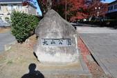 秋(2) 在水一方:0151.JPG  西那須野.大山参道