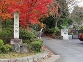 2010日本關西(3)京都東郊楓葉盟:0287.jpg  京都 曼殊院