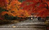 旅 遊 精 選:0096.jpg 京都嵐山 二尊院