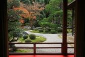 2010日本關西(3)京都東郊楓葉盟:0308.jpg  京都 曼殊院