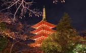 旅 遊 精 選:0031.JPG (2014-11-23 東京都 高幡不動尊)