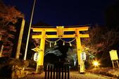 秋之戀(14) 京都秋夜:0847.jpg 坂本地区日吉大社