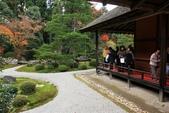 2010日本關西(3)京都東郊楓葉盟:0311.jpg  京都 曼殊院