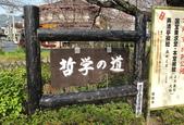 日本櫻花(14) 哲學之道與蹴上鐵道:0841.jpg 哲學之道