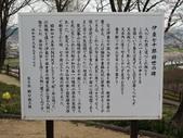 春(7) 美麗的零落:0958.JPG 船岡城址公園