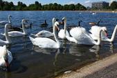 英國(5)倫敦 (五):倫敦的公園、地鐵 ...:0255.jpg ( 倫敦 London Kensington Gardens )
