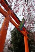 日本櫻花(11) 京都平野神社與嵐山:0700.jpg 平野神社