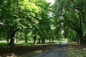 英國(5)倫敦 (五):倫敦的公園、地鐵 ...:0271.jpg ( 倫敦 London Kensington Gardens )