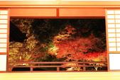 秋之戀(14) 京都秋夜:1011.jpg 京都隨心院