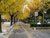 2010日本關西(1)兵庫三城:姬路、明石、神戶:0067.jpg 姬( 姫 ) 路城