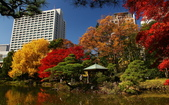 旅 遊 精 選:0475.JPG (2014-11-27 東京日比谷公園)