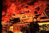 秋之戀(14) 京都秋夜:0866.jpg 坂本地区西教寺