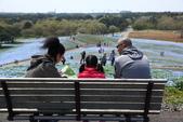 北國之春(1) 戀人協奏曲:0106.jpg 国営ひたち海浜公園