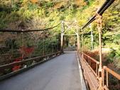 秋葉鐵道(四) 鐵道秋之戀:0367.JPG  箱根登山鉄道