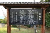 花見(1) 一廂情願:0046.JPG   能古島アイランド パーク