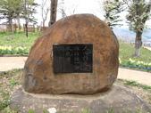 春(7) 美麗的零落:0956.JPG 船岡城址公園
