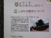 春(7) 美麗的零落:0963.JPG 船岡城址公園