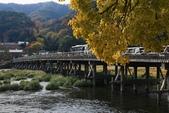 2010日本關西(5)嵐山與桃山:0482.jpg 京都 嵐山 渡月橋