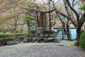 春(5) 幾度花落時:0485.JPG 和らぎの道
