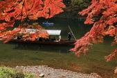 2010日本關西(5)嵐山與桃山:0495.jpg 京都 嵐山
