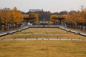 北國之秋(二) 秋詩篇篇:0223.jpg 昭和記念公園