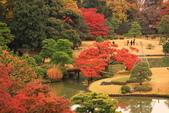 秋之戀(三) 庭園、森林、往事如昨:0142.jpg 六義園