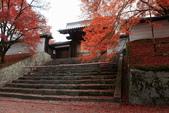 2010日本關西(3)京都東郊楓葉盟:0301.jpg  京都 曼殊院