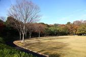 秋之旅(六) 東海秋豔:0524.jpg 浜松城公園
