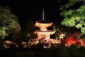 秋之戀(14) 京都秋夜:1152.jpg 京都大覚寺