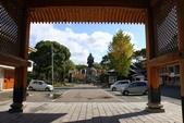 九州(6) : 博多 ( 福岡市 ) 公園散策:0675.JPG