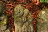 2010日本關西(4)可愛的愛宕念佛寺:0424.jpg 京都 愛宕念佛寺