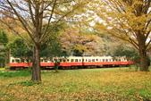 秋(3) 天長地久:0339.JPG   小湊鉄道 上総大久保駅